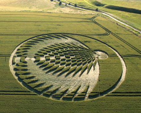 Oxfordshire Crop Circle 2006
