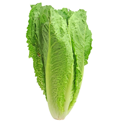 Throw It All Away: CDC Expands Warning on Romaine Lettuce