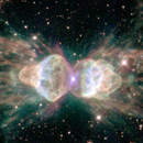 "The ""Ant Nebula"""