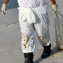 BP Oil Spill Cleanup