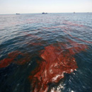 Photo: Scientist locates another vast oil plume in the gulf