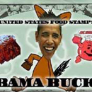 Photo: GOP mailing depicts Obama's face on food stamp